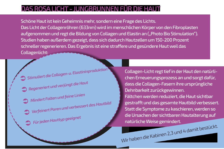 Collagen_erklärung